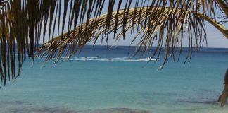 Le perle delle Canarie le spiagge Fuerteventura